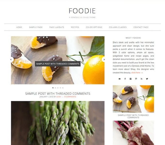 """Foodie WordPress"" vaiko tema"