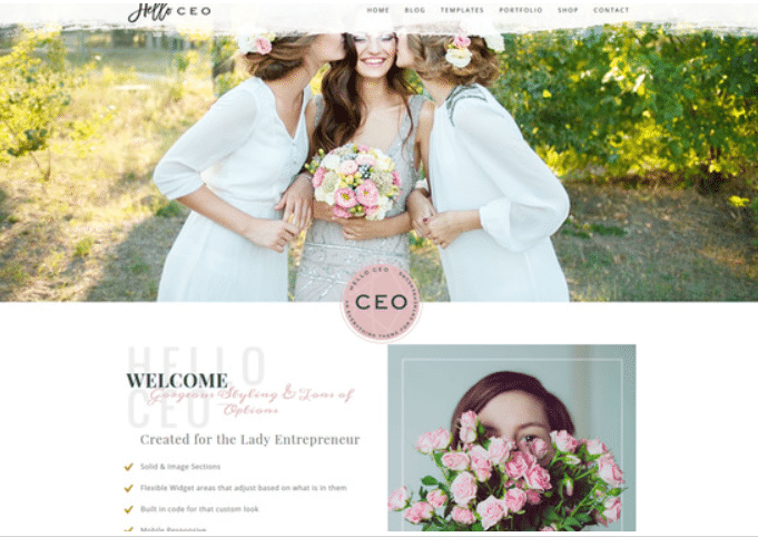 Hallo CEO WordPress Theme