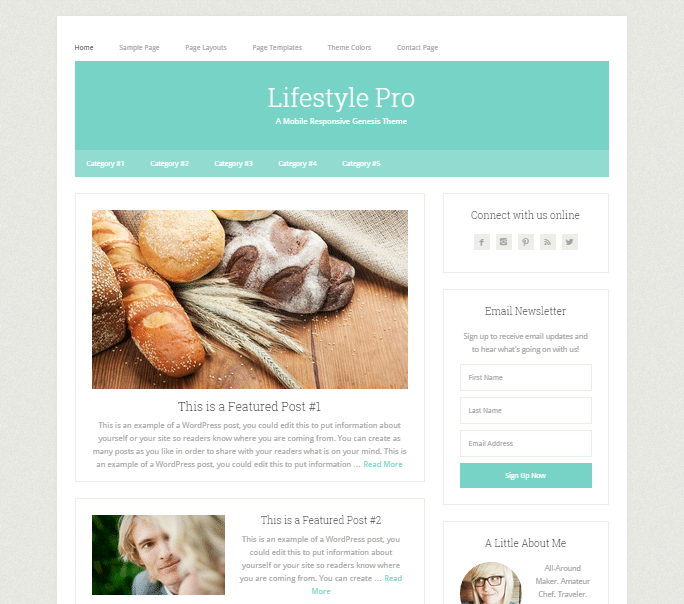 Lifestyle-Pro-WordPress-тема